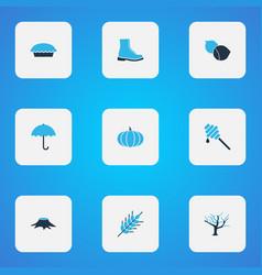 seasonal icons colored set with hazelnut pumpkin vector image