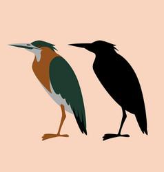 Set green heron flat style vector