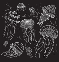 Set with jellyfishes in ethnic boho style vector