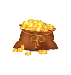 treasure coins in brown bag vector image