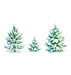 Little snow-covered pine tree and two fir trees vector