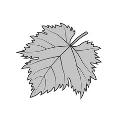 grape leaf gray symbol or vector image vector image