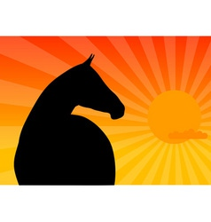 Dark horse vector