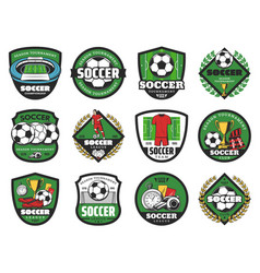 football sport and soccer ball icons vector image