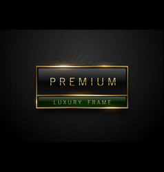 premium black green label with golden frame on vector image