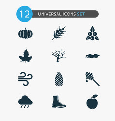 seasonal icons set with honey dipper boot puddle vector image
