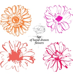 Set hand drawn sketchers flowers vector