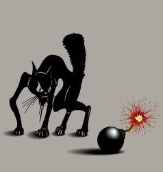 cat was scared of bombs vector image