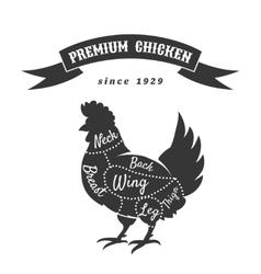 Chicken meat cuts diagram vector image vector image