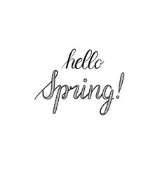 hello spring calligraphy hand-drawn vector image vector image