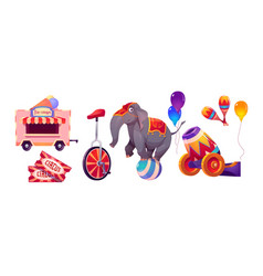 circus stuff and elephant on ball big top tent vector image