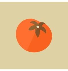 Tomato Food Flat Icon vector