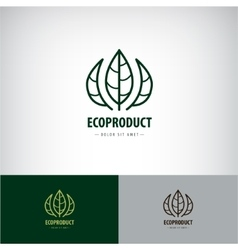 line leaves logo Eco natural organic vector image vector image