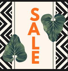sale poster with two alocasia zulu mask leaves vector image vector image