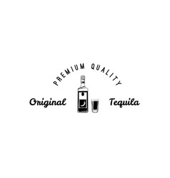 hand draw of tequila bottle vector image