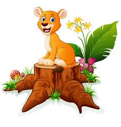 Cartoon lion sitting on tree stump vector