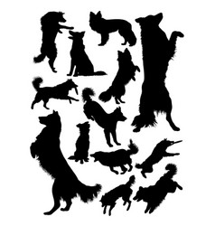 Collie dog animal silhouette vector