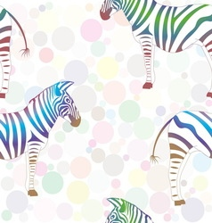 colorful zebra on background multicolored vector image
