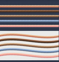 different rope line set color rope vector image