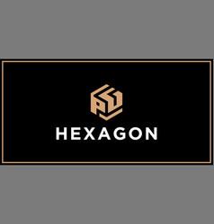 Pg hexagon logo design inspiration vector