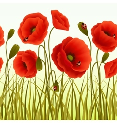 Poppy grass seamless wallpaper vector image