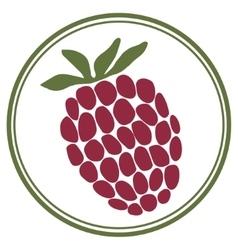 Raspberry label vector