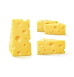 Set of Pieces Swiss Cheese Close up Isolated vector