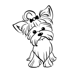 Sketch funny Yorkshire terrier dog sitting vector