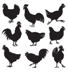 chicken set vector image vector image