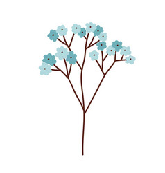 Beautiful branch blossomed spring forget me not vector