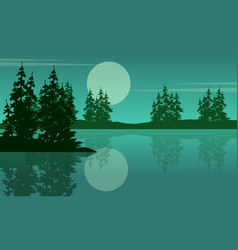 beauty scenery lake with spruce silhouettes vector image
