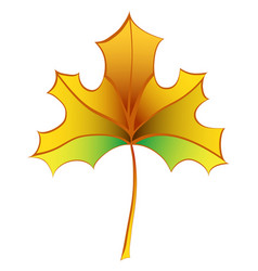 colorful autumn maple leaf vector image