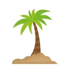Palm tree icon Summer design graphic vector image