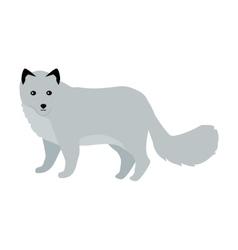 Polar fox in flat design vector