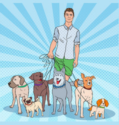 Pop art dog walker young man walking with dogs vector