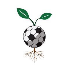 Soccer football sapling icon vector