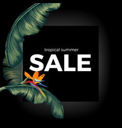 tropic summer night sale on black with vector image