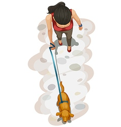 A topview of a girl and her pet vector image vector image