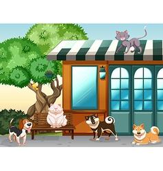 Domestic animals vector image