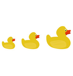 Group of rubber ducks vector