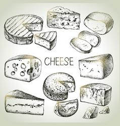 Hand drawn sketch cheese types set natural vector