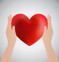 Hands Holding Heart Love Concept vector image