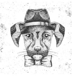 Hipster animal dog with hat hand drawing muzzle vector