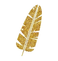 Isolated feather plume design vector image