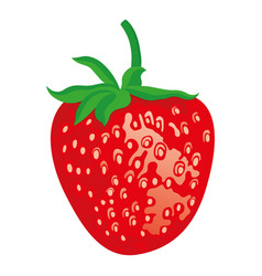 ripe red strawberries vector image