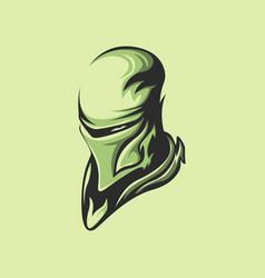 shadow ninja green vector image