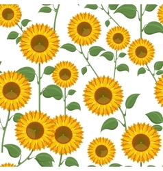 Sunflowers seamless pattern vector image