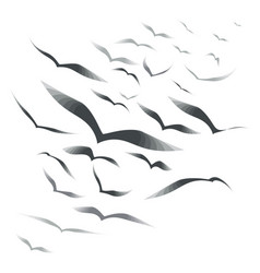 flock of birds on a white background vector image vector image