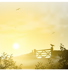 Misty Morning Landscape vector image