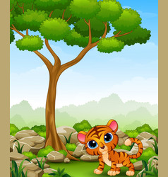 Cartoon baby tiger in the jungle vector